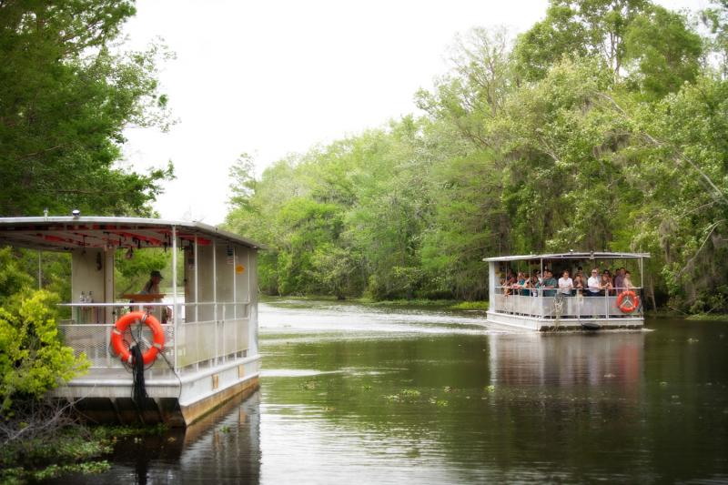 Two river boats during a swamp tour